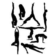 Eight Series Of Ashtanga Yoga Asanas