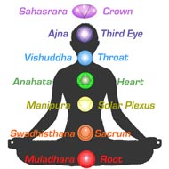 Kundalini and the Seven Chakras